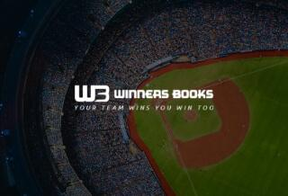 Web Design for Winners Book